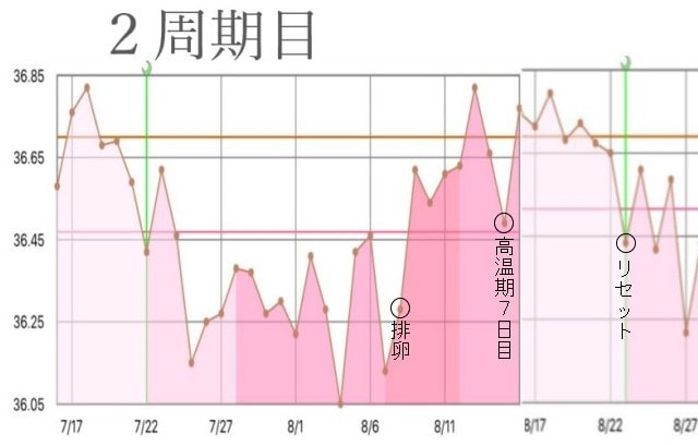 2周期目の基礎体温グラフ